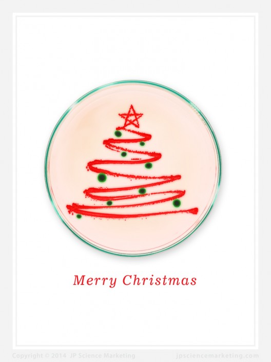 Christmas Tree Biotech Christmas Card - JP Science Marketing